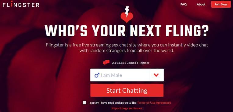 Flingster website